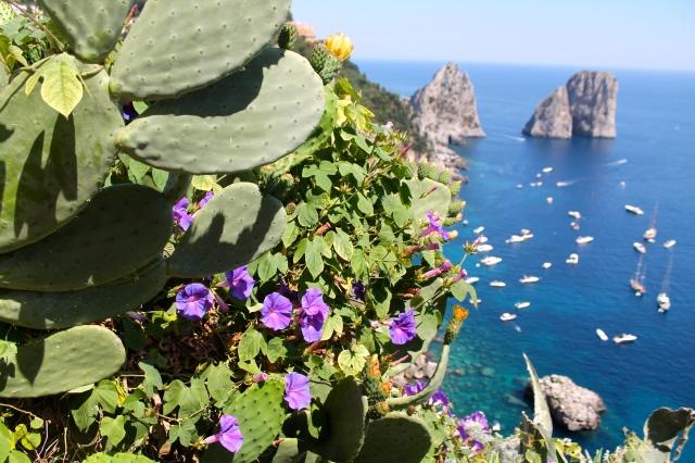 Pride & Polka Dots Capri Gardens
